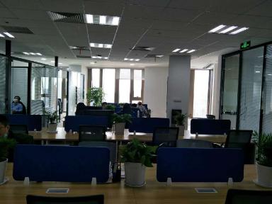 浦东新区办公楼绿植租赁优惠价格 诚信经营「上海花漫亭环境服务供应」