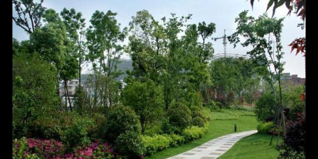 徐匯區園林綠化景觀哪家便宜,園林綠化景觀
