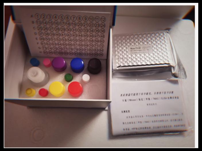 馬白介素13(IL13) ELISA 試劑盒 歡迎咨詢「杭州齊譽生物科技供應」