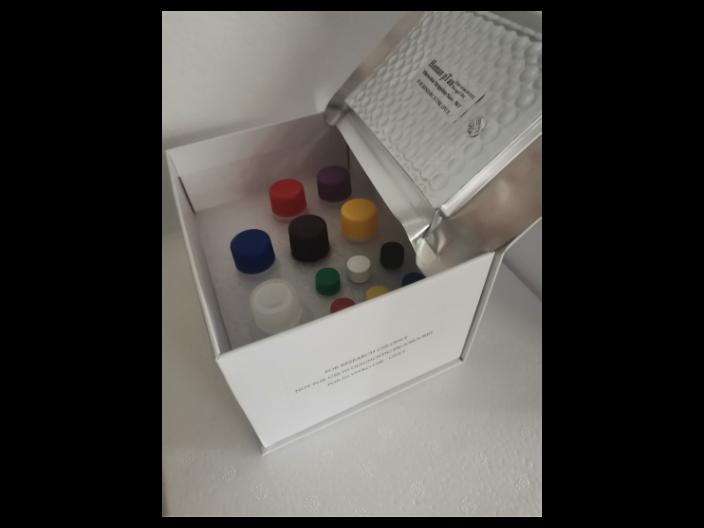 人超敏前列腺特异性抗原(PSA-U S)ELISA试剂盒