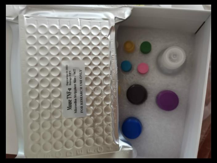 人蛋白激酶Cδ(PKCδ) ELISA 试剂盒