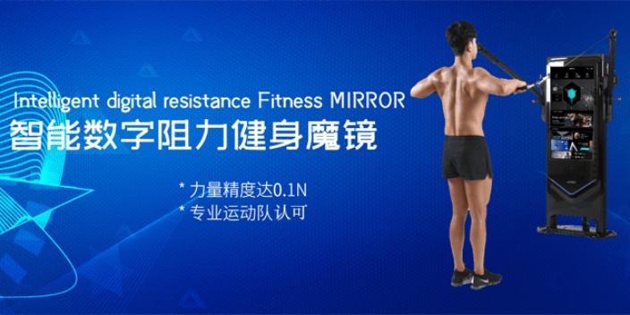 安徽小型化數字阻力 杭州亞辰電子科技供應