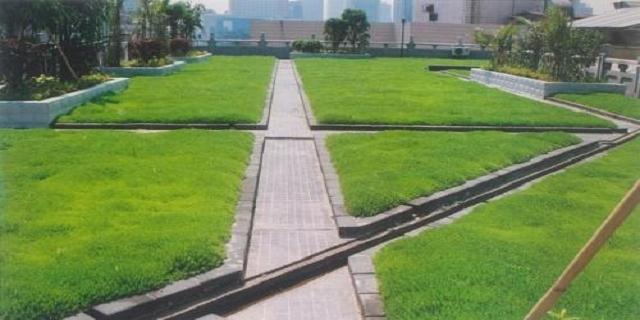 安徽轻质屋顶绿化施工 值得信赖「杭州云乘园艺科技供应」