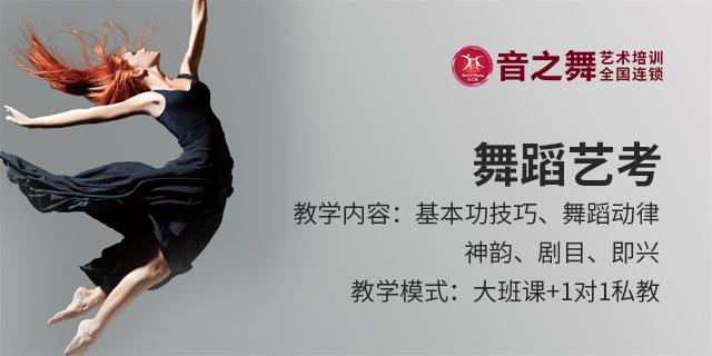 舟山青少年舞蹈艺考基本功,舞蹈艺考
