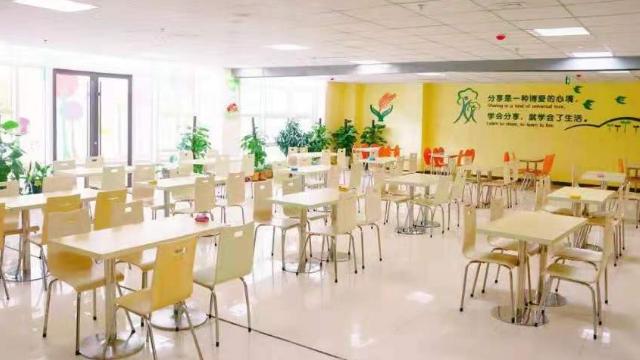 岚山区小学学校招生 来电咨询「青岛加煌中加学校供应」