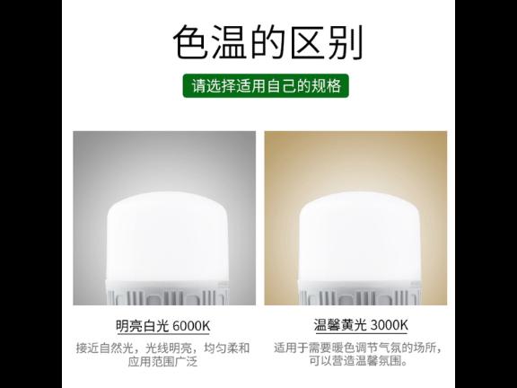 浙江小灯泡厂家直销 诚信经营 江雅电子加工店供应