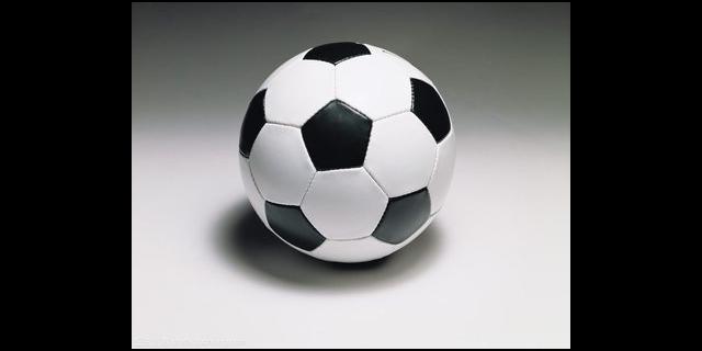 浦东新区各种足球培训营客户至上