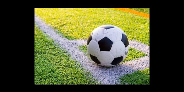 崇明区时代足球平均价格 上海捷希