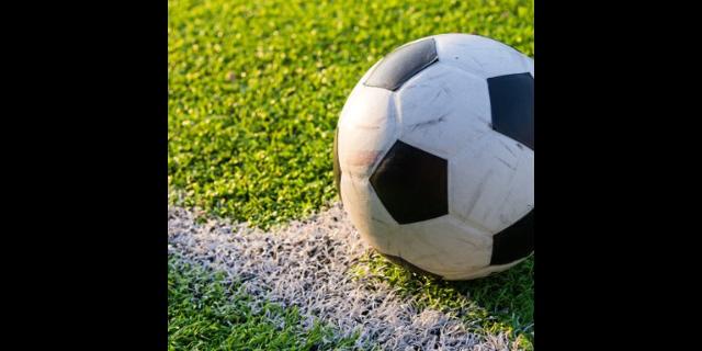黄浦区各种足球质量推荐