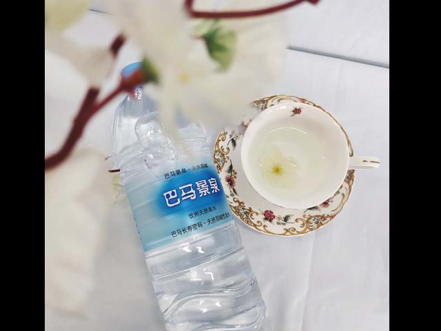 江苏自涌泉水排名 欢迎咨询  广西巴马晶硒岩泉水业供应