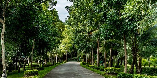 翁牛特旗推广园林绿化工程价格实惠