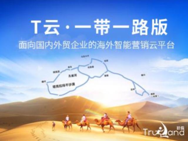磐安互联网推广产品 客户至上 金华市珍岛信息技术供应