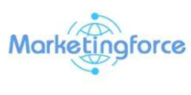品牌互联网推广专员 客户至上 金华市珍岛信息技术供应