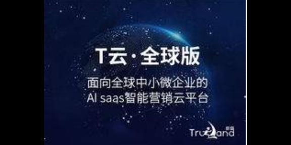 金华网站营销 诚信互利 金华市珍岛信息技术供应