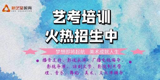 重庆比较靠谱的艺考培训哪里比较好 推荐咨询「新艺堂教育培训供应」