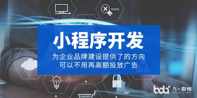 湖北小程序開發市面價 北京九一數榜科技供應 北京九一數榜科技供應