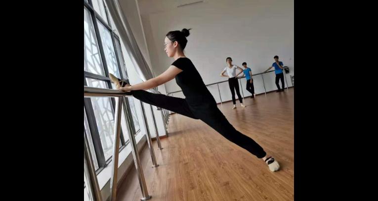 吉安舞蹈培训一节课多少钱 九子艺教育「江西九子艺教育咨询供应」