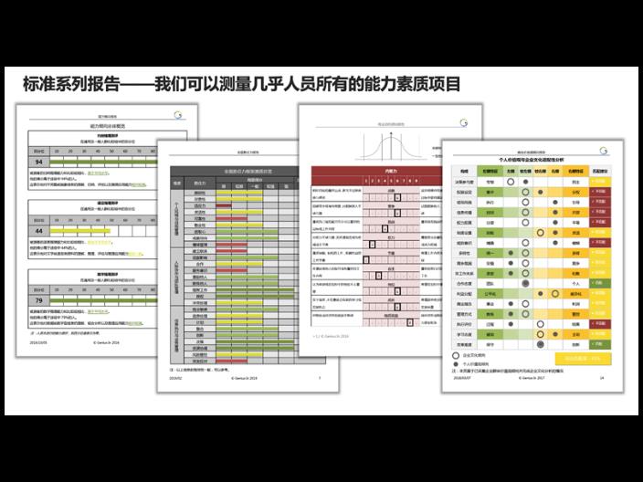 江苏商业价值观人才测评SaaS平台 值得信赖「隽略管理咨询供应」