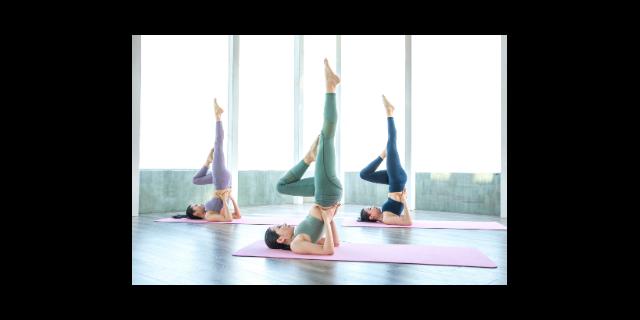 上海专业瑜伽以客为尊