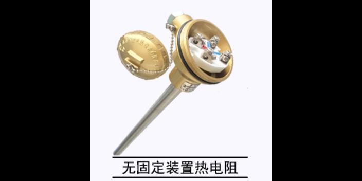 河南炉顶热电阻厂家供应 贴心服务 江苏楚天自动化仪表供应