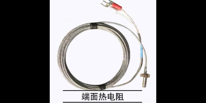 广东炉顶热电阻厂家直销 欢迎咨询 江苏楚天自动化仪表供应