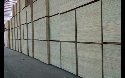 江苏工地建筑模板,板