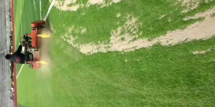 安徽人工草坪顆粒,草坪顆粒