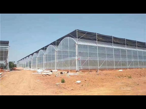 湖南蔬菜大棚價格 江蘇御地溫室工程供應