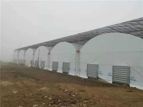 云南玻璃温室大棚定制价格 江苏御地温室工程供应