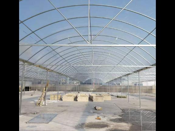 四川薄膜温室价格 江苏御地温室工程供应