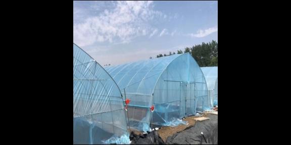 海南高性能薄膜厂商「江苏御地温室工程供应」