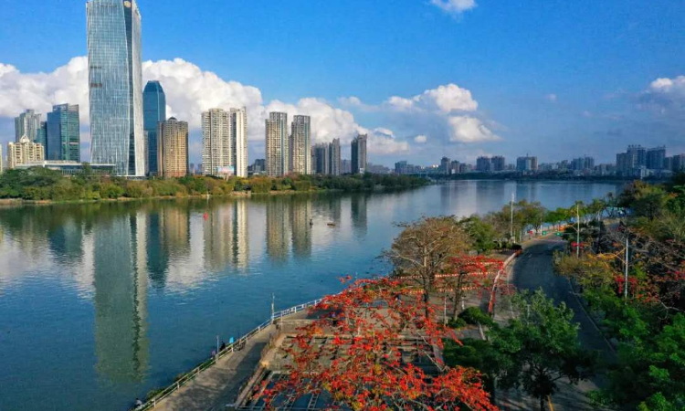 广东惠州房价优惠 欢迎来电 惠州市觅好房房产科技供应