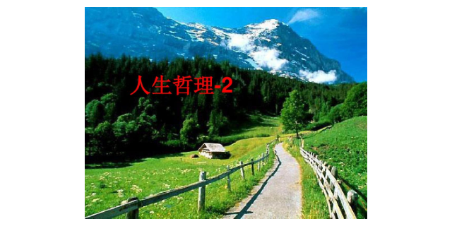 武汉咨询哲学人生作文