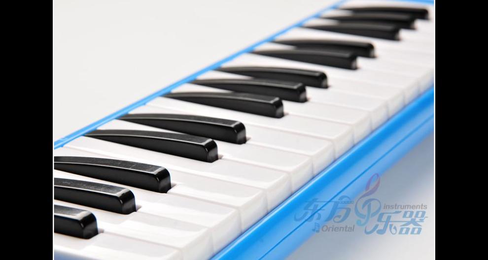 山东学生口风琴多少钱一只