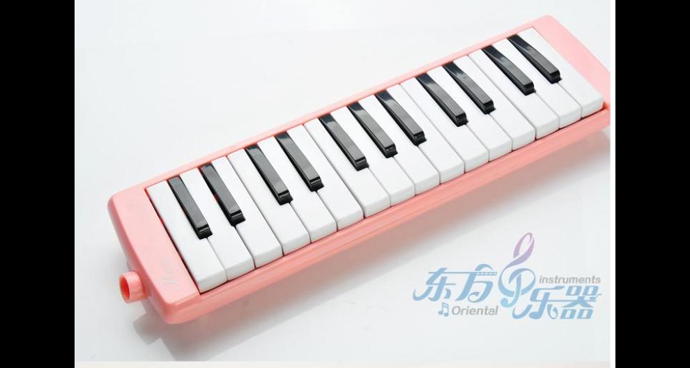 廣東小學口風琴品牌 歡迎咨詢「江蘇東方樂器供應」
