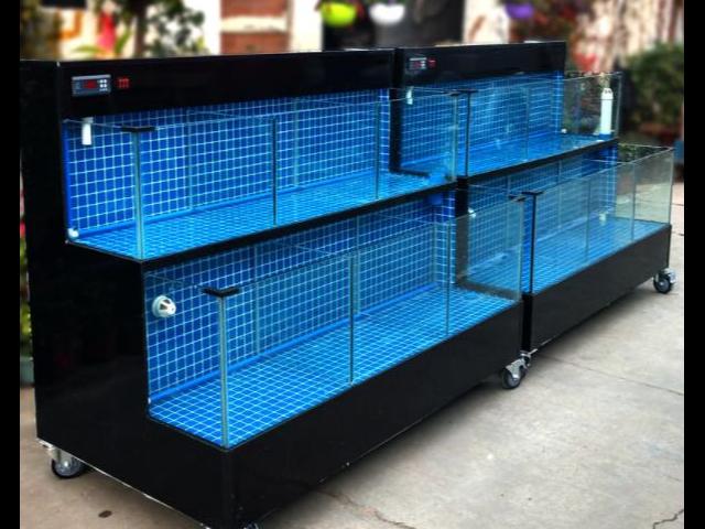 興化海鮮魚缸求購 尚美供
