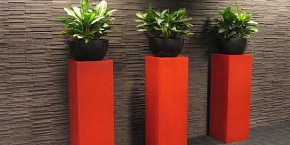 玄武區室內花卉租賃哪里有 歡迎來電 南京康之蕊園藝供應