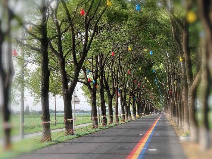 蕪湖供應音樂公路 歡迎來電 江蘇龍池山金生態文化旅游供應