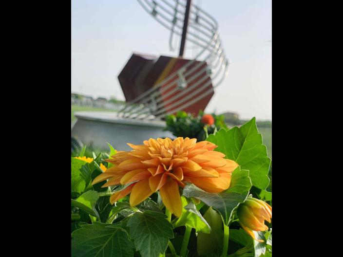 北京定制音乐彩虹路面供应商家