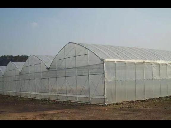 吉林玻璃连栋温室大棚施工