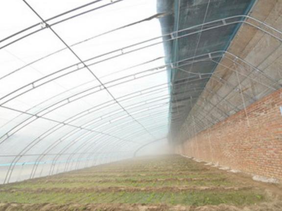 山东日光温室施工