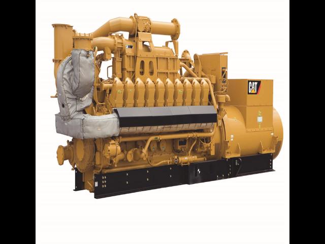 养殖场沼气池发气机组专业生产 诚信为本 利星行机械供应