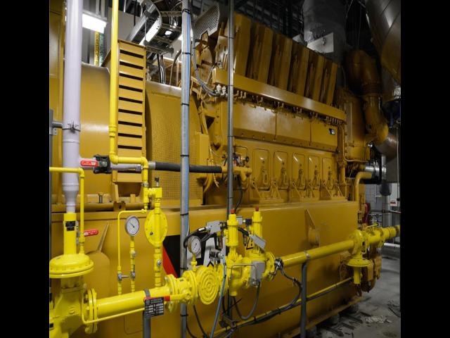 江苏纯沼气发电机组哪里买 客户至上 利星行机械供应