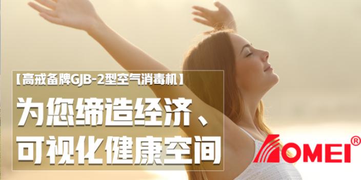 江门空气消毒机环境监测 北京时代光华电子供应