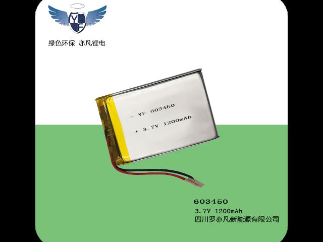 杨凌区供应聚合物锂电池厂家