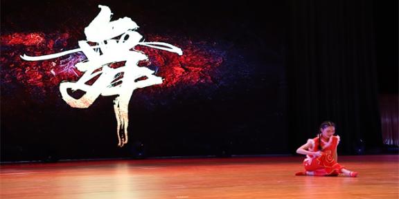 甘肃哪个艺术舞蹈学院便宜 兰州慈爱实验艺术职业学校供应