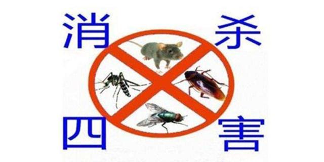 兰州灭鼠联系方式「兰州腾达杀虫服务供应」