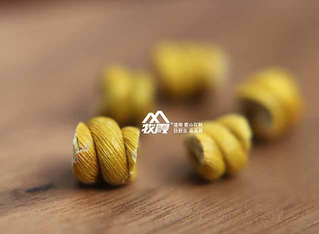 苏州珍稀的霍山石斛,霍山石斛