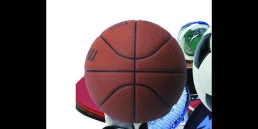 常州正规体育用品批发价格是多少
