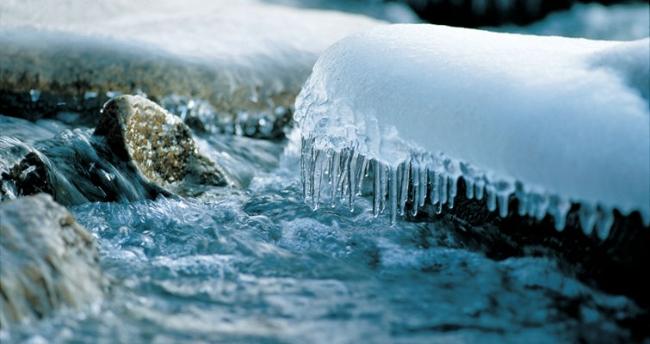 鱼类可是冒着生命危险在越冬......